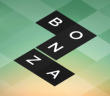 Bonza Word Puzzle: July 2015 - Answers