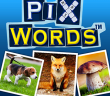 PixWords: Crosswords - All 3 Letter Answers