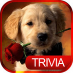 Dog Trivia Game answers
